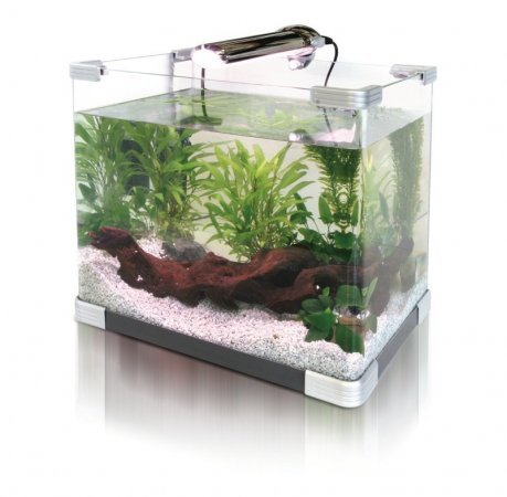 aquarium planning How to Prepare a New Aquarium