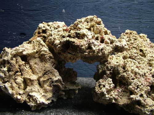 aquarium rocks How to Add Rocks and Wood to Your Freshwater Aquarium