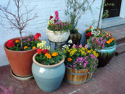 garden containers How to Decorate Your Small Garden with Containers