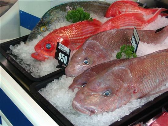 How to Choose Fresh Fish for Cooking How to Choose Fresh Fish for Cooking